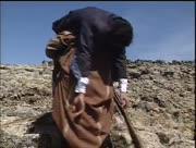Al-shawka-al-sawda2-9