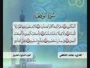 Hisham-shafey-14