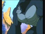 Kong-8